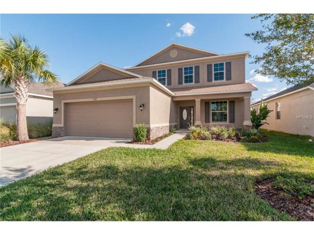 7107 Nightshade Drive, Riverview, FL 33578 (MLS #T2896095) :: The Duncan Duo & Associates
