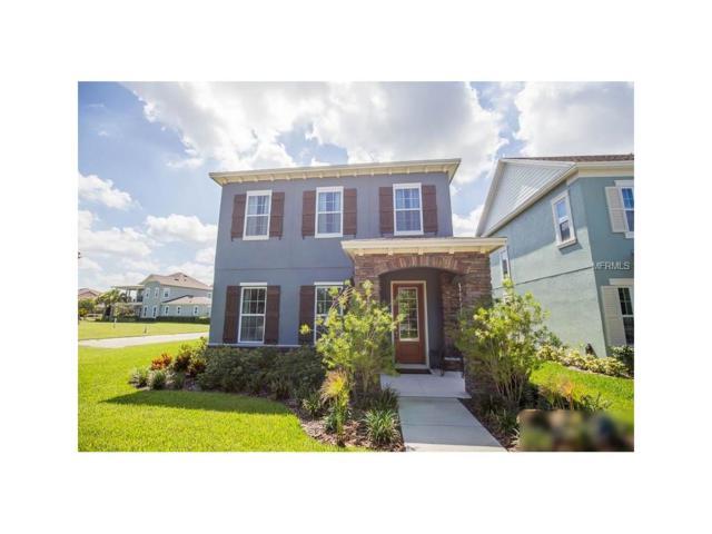 5910 Village Center Drive, Lithia, FL 33547 (MLS #T2896307) :: The Duncan Duo & Associates