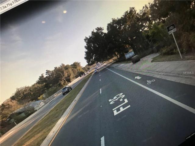 12348 N Us Highway 301, Oxford, FL 34484 (MLS #T2896362) :: The Duncan Duo Team