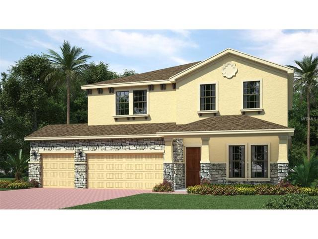32353 Fenwick Lane, Wesley Chapel, FL 33543 (MLS #T2896478) :: The Duncan Duo & Associates