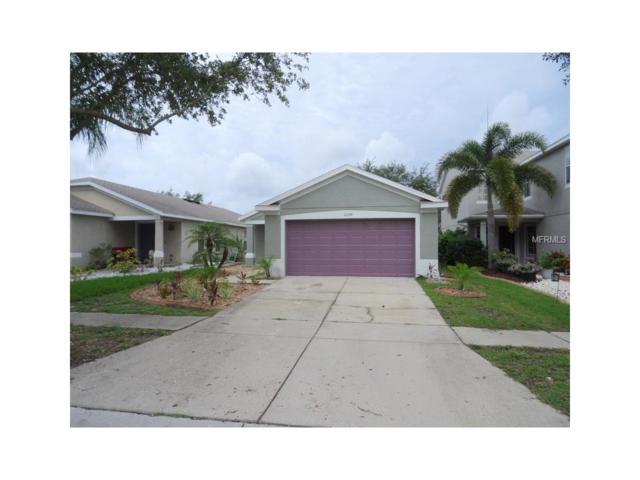 11339 Cocoa Beach Drive, Riverview, FL 33569 (MLS #T2896969) :: The Duncan Duo & Associates