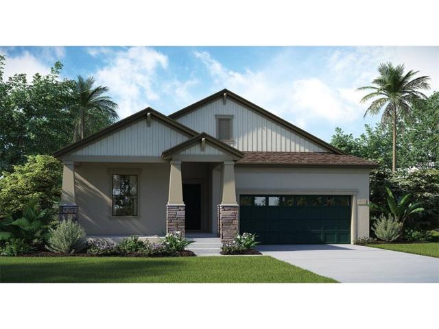 3124 Dark Sky Drive, Harmony, FL 34773 (MLS #T2897226) :: Godwin Realty Group