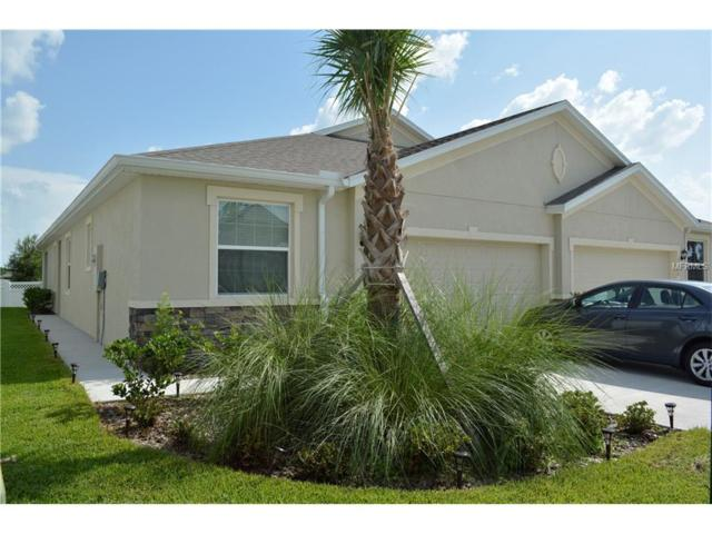 32982 Windelstraw Drive, Wesley Chapel, FL 33545 (MLS #T2897512) :: Team Bohannon Keller Williams, Tampa Properties