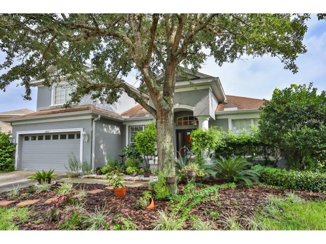 10725 Banfield Drive, Riverview, FL 33579 (MLS #T2897611) :: The Duncan Duo & Associates