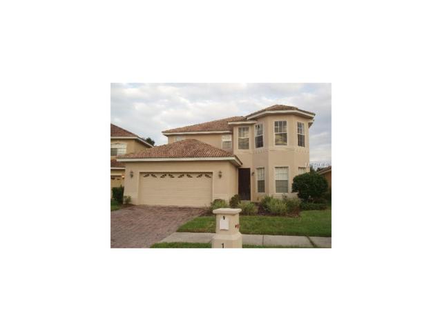 18005 Maui Isle Drive, Tampa, FL 33647 (MLS #T2897827) :: Team Bohannon Keller Williams, Tampa Properties