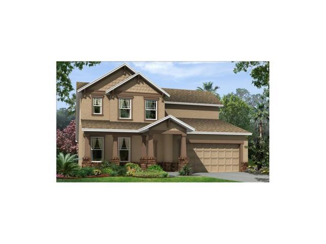 32612 Harmony Oaks Drive, Wesley Chapel, FL 33545 (MLS #T2897861) :: The Duncan Duo & Associates
