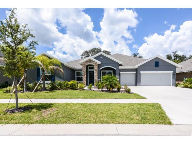 1210 Lorea Lane, Brandon, FL 33511 (MLS #T2897971) :: The Duncan Duo & Associates