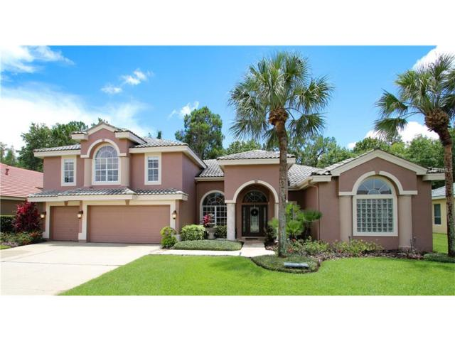 12006 Marblehead Drive, Tampa, FL 33626 (MLS #T2898001) :: The Duncan Duo Team
