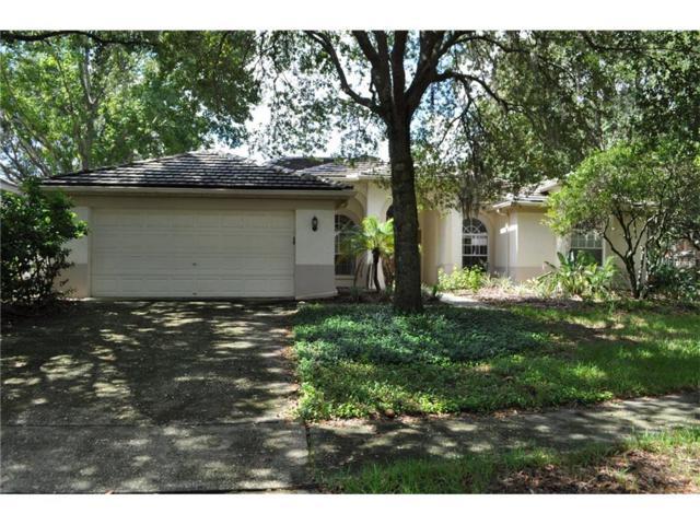9319 Wellington Park Circle, Tampa, FL 33647 (MLS #T2898025) :: Arruda Family Real Estate Team