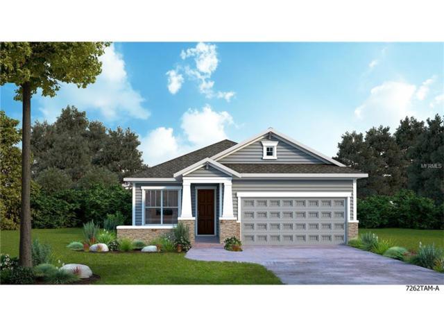 13917 Kingfisher Glen Drive, Lithia, FL 33547 (MLS #T2898079) :: The Duncan Duo & Associates