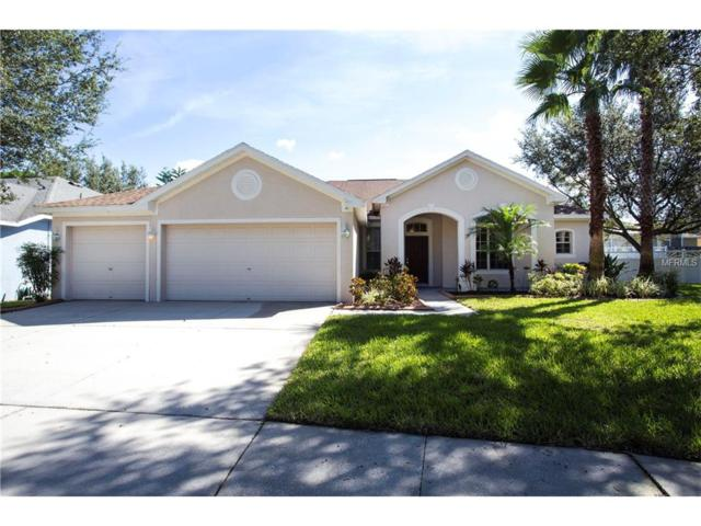 12426 Bramfield Drive, Riverview, FL 33579 (MLS #T2898133) :: The Duncan Duo & Associates