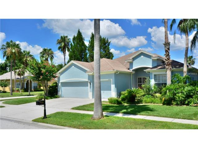 10608 Gretna Green Drive, Tampa, FL 33626 (MLS #T2898139) :: The Duncan Duo & Associates
