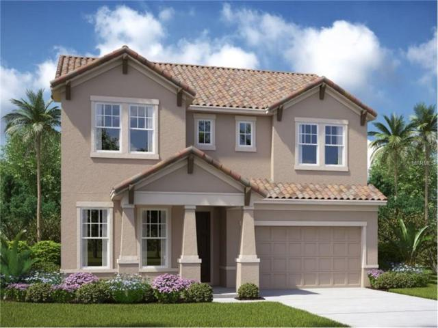 4416 Conchfish Lane, Osprey, FL 34229 (MLS #T2898191) :: White Sands Realty Group