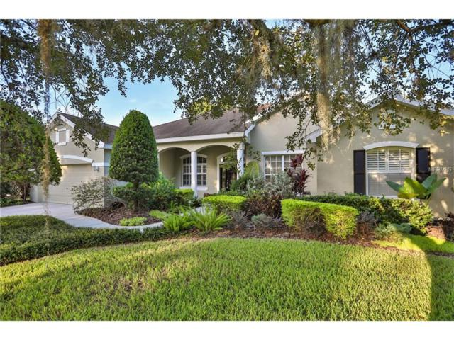 2929 Forest Hammock Drive, Plant City, FL 33566 (MLS #T2898291) :: Rutherford Realty Group | Keller Williams