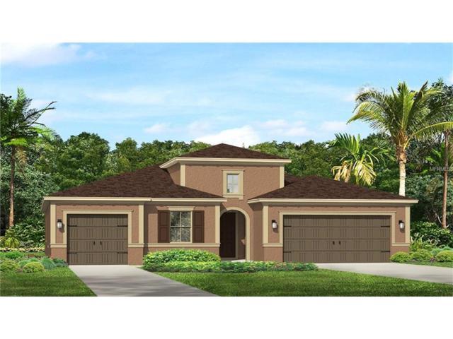 3716 Wicket Field Road, Lutz, FL 33548 (MLS #T2898328) :: The Duncan Duo & Associates