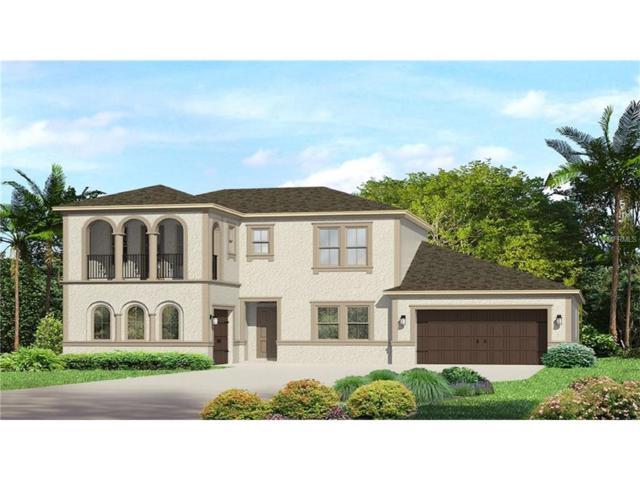 18315 Leafmore Street, Lutz, FL 33548 (MLS #T2898335) :: The Duncan Duo & Associates