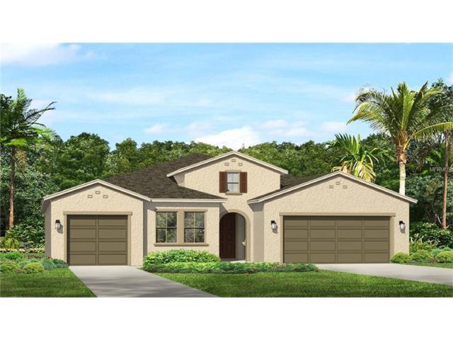 12023 Medley Terrace, Lakewood Ranch, FL 34211 (MLS #T2898412) :: Medway Realty