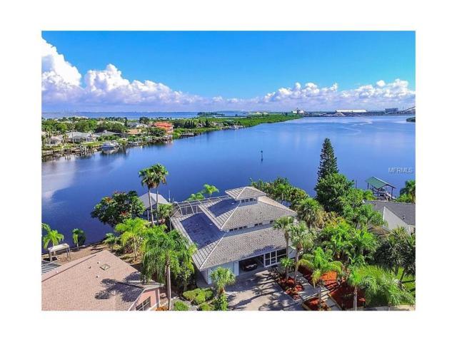 6641 Dolphin Cove Drive, Apollo Beach, FL 33572 (MLS #T2898525) :: Arruda Family Real Estate Team