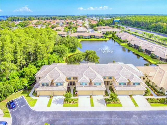 2576 Silverback Court, Palm Harbor, FL 34684 (MLS #T2898565) :: Griffin Group