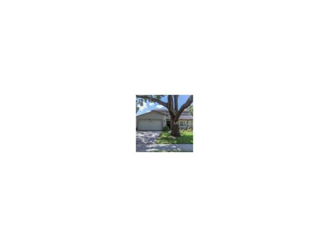 17615 Shadyside Circle, Lutz, FL 33549 (MLS #T2898596) :: The Duncan Duo & Associates