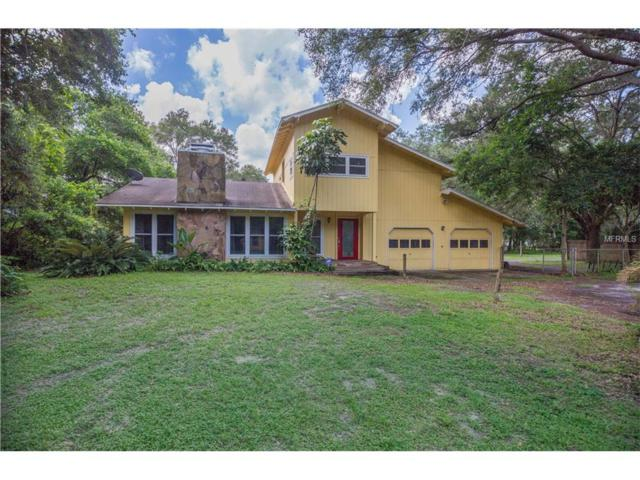 16801 Boy Scout Road, Odessa, FL 33556 (MLS #T2898599) :: Griffin Group