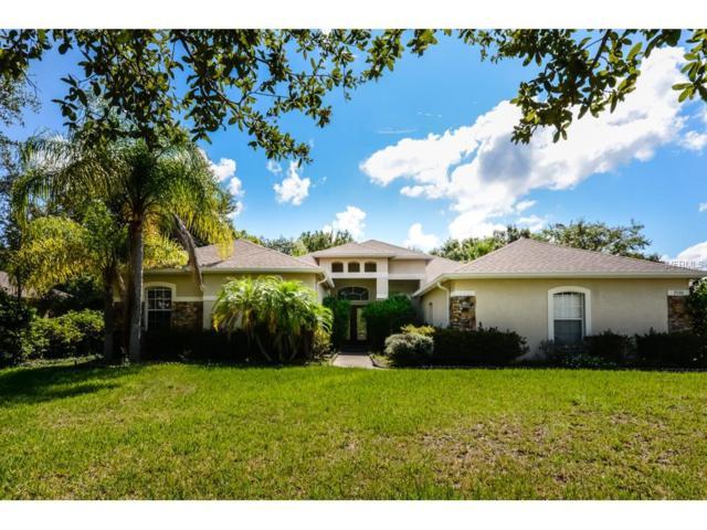7526 Dunbridge Drive, Odessa, FL 33556 (MLS #T2898625) :: The Duncan Duo & Associates