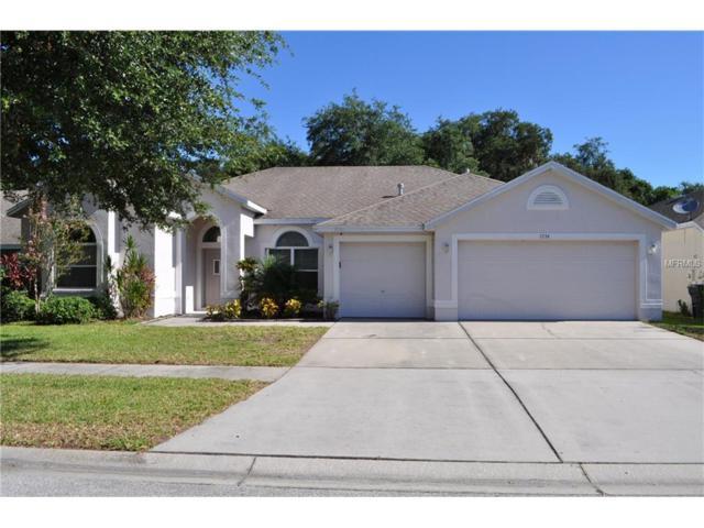 7254 Bucks Ford Drive, Riverview, FL 33569 (MLS #T2898668) :: Arruda Family Real Estate Team