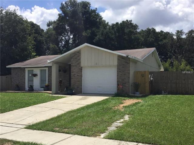 3201 King Richard Court, Seffner, FL 33584 (MLS #T2898794) :: Arruda Family Real Estate Team