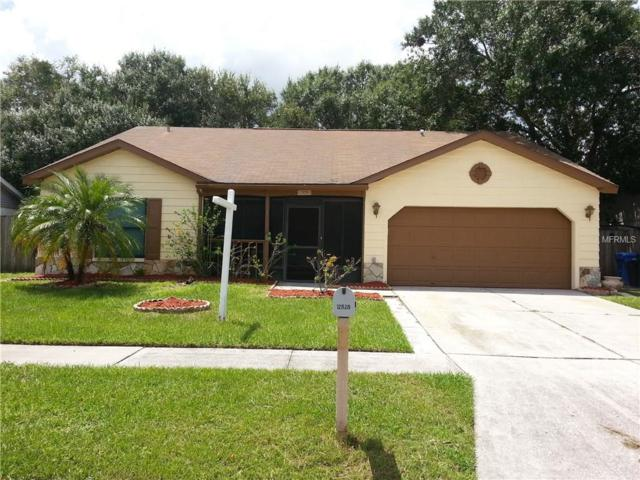 12828 Tallowood Drive, Riverview, FL 33579 (MLS #T2898814) :: The Duncan Duo & Associates