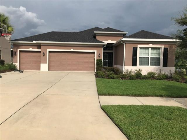 11316 Coventry Grove Circle, Lithia, FL 33547 (MLS #T2898834) :: Arruda Family Real Estate Team