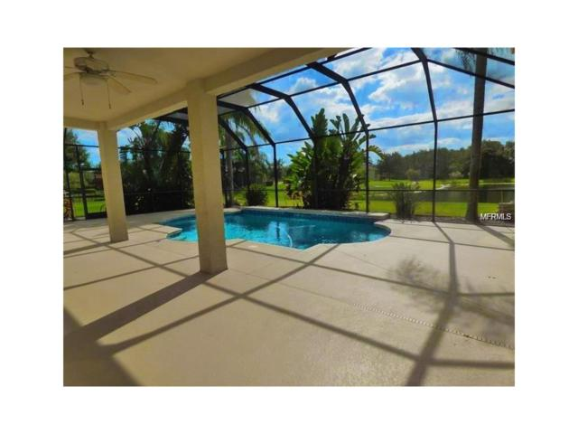 15215 Merlinpark Place, Lithia, FL 33547 (MLS #T2898865) :: Arruda Family Real Estate Team