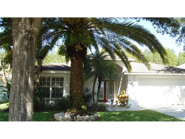 19724 Morden Blush Drive, Lutz, FL 33558 (MLS #T2898903) :: The Duncan Duo & Associates