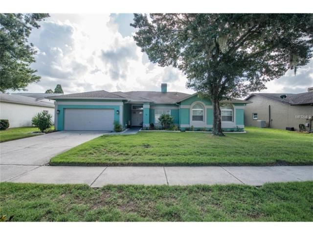 1332 Monte Lake Drive, Valrico, FL 33596 (MLS #T2898924) :: Arruda Family Real Estate Team