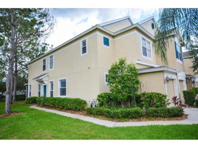 2727 Conch Hollow Drive, Brandon, FL 33511 (MLS #T2898925) :: The Duncan Duo & Associates