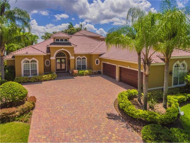 9712 Tree Tops Lake Road, Tampa, FL 33626 (MLS #T2898938) :: White Sands Realty Group