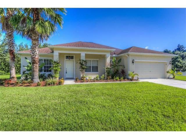 12304 Bramfield Drive, Riverview, FL 33579 (MLS #T2898996) :: The Duncan Duo & Associates