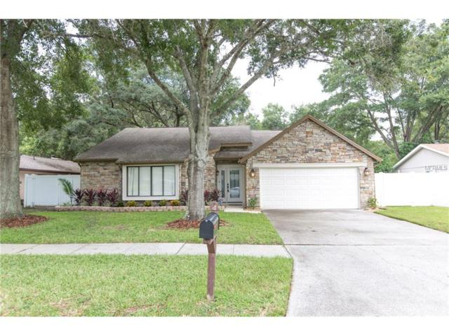 5807 Lady Bug Court, Tampa, FL 33625 (MLS #T2899002) :: The Duncan Duo & Associates