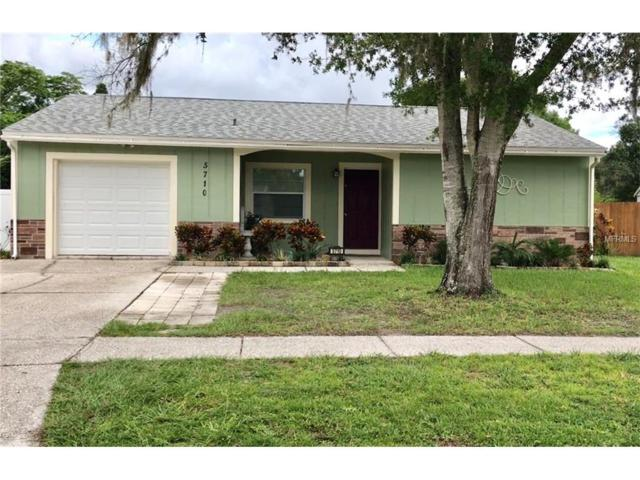 5710 Ridgestone Drive, Tampa, FL 33625 (MLS #T2899048) :: The Duncan Duo & Associates