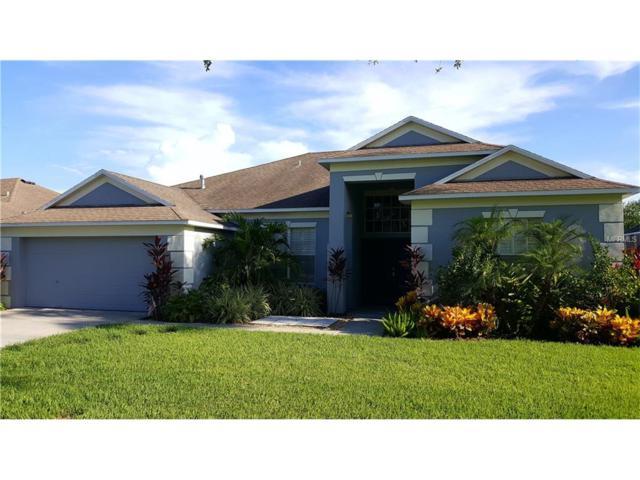 2739 Abbey Grove Drive, Valrico, FL 33594 (MLS #T2899049) :: Arruda Family Real Estate Team
