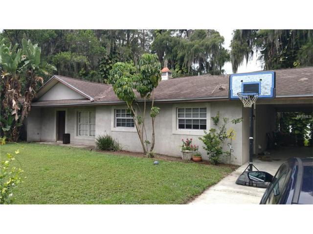 19808 Rhea See Drive, Lutz, FL 33548 (MLS #T2899149) :: The Duncan Duo & Associates