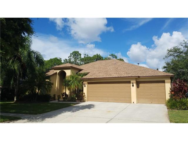 10601 Keswick Place, Tampa, FL 33626 (MLS #T2899165) :: The Duncan Duo & Associates