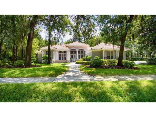 5837 Audubon Manor Boulevard, Lithia, FL 33547 (MLS #T2899225) :: Dalton Wade Real Estate Group