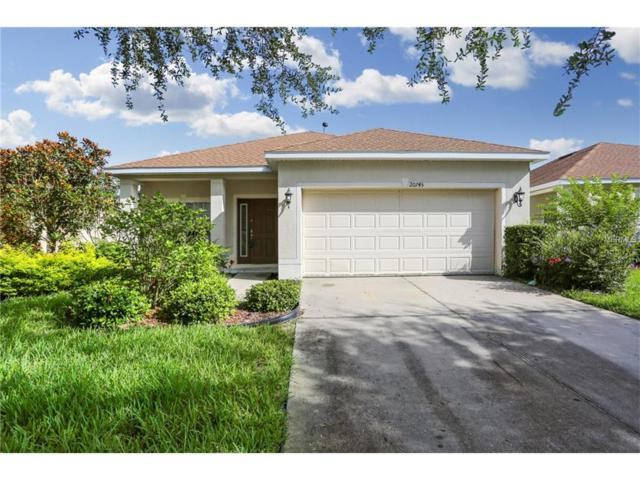 20745 Great Laurel Avenue, Tampa, FL 33647 (MLS #T2899244) :: White Sands Realty Group