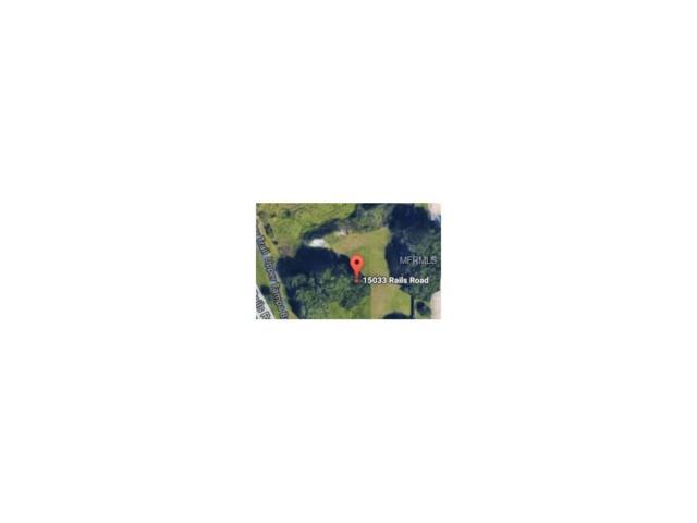 15033 Rails Road, Odessa, FL 33556 (MLS #T2899307) :: Griffin Group