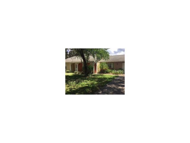 8003 Tierra Verde Drive, Tampa, FL 33617 (MLS #T2899341) :: Griffin Group