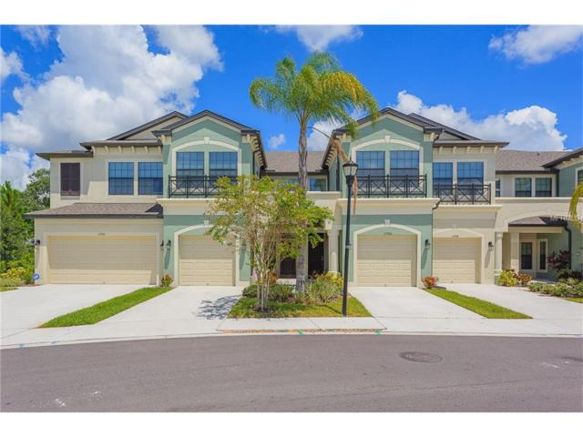 11704 Crowned Sparrow Lane, Tampa, FL 33626 (MLS #T2899367) :: The Duncan Duo & Associates