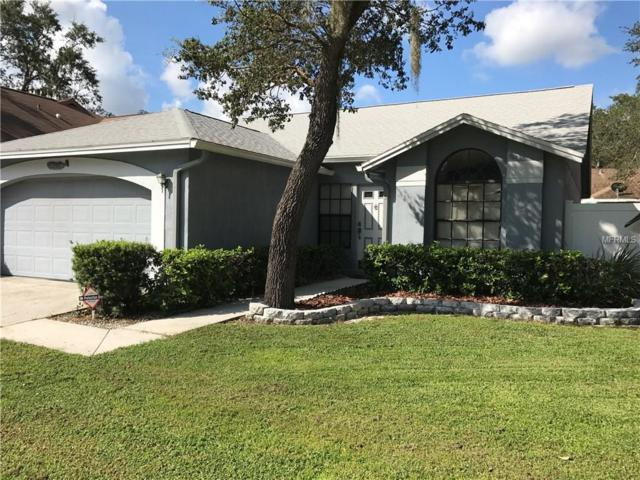 2507 Gotham Way, Valrico, FL 33596 (MLS #T2899383) :: White Sands Realty Group