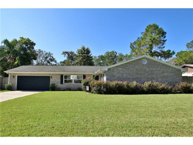 1105 Lady Guinevere Drive, Valrico, FL 33594 (MLS #T2899420) :: Griffin Group