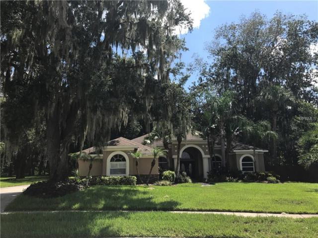 2834 Mossy Timber Trail, Valrico, FL 33596 (MLS #T2899423) :: The Duncan Duo & Associates