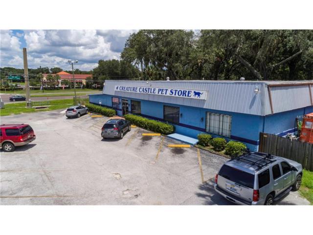 101 S Saint Cloud Avenue, Valrico, FL 33594 (MLS #T2899553) :: Arruda Family Real Estate Team